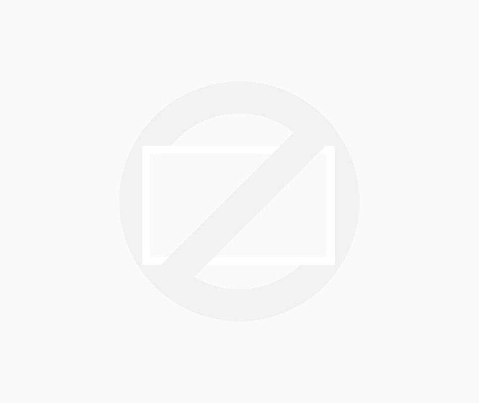 Verwacht: DeLorean DMC-12